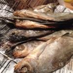 poisson salé-crédit photo pixabay.com