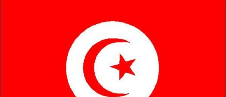 Article : À toi Tunisie