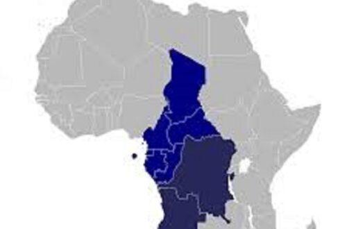 Article : Afrique centrale: dernier rempart contre la poussée des mouvements démocratique