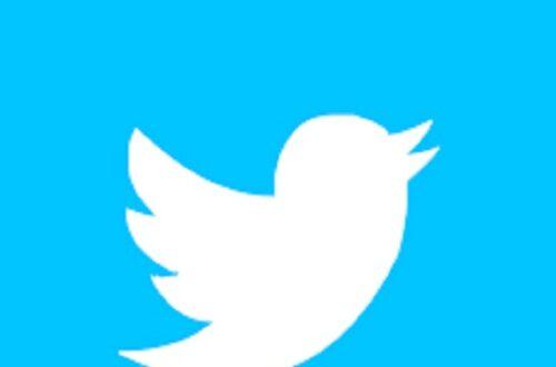 Article : Quand un journaliste congolais se fait harceler sur Twitter