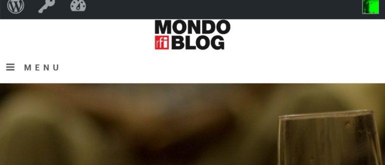 Article : Un mondoblogueur, un article (Première partie)