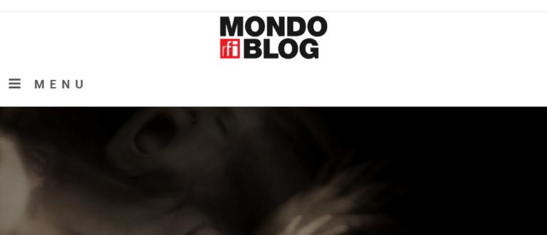 Article : Un mondoblogueur, un article ( deuxième partie)
