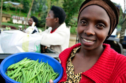 Article : L'avenir de l'alimentation, clé de  la survie de l'humanité